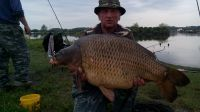 Click image to open!
